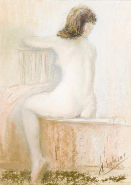 ALFRREDO SALAZAR (Tovar, 1936) Desnudo de espaldas