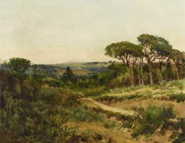 JOSÉ LUPIAÑEZ (Málaga 1864-1933) Paisaje