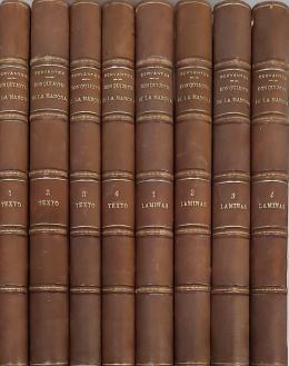 MIGUEL DE CERVANTES SAAVEDRA (Alcalá de Henares, 1547 - Madrid, 1616) El Ingenioso Hidalgo Don Quijote de la Mancha. Quijote del Centenario. 8 tomos: 4 de texto y 4 de láminas.